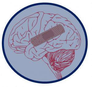 IBP - Brain